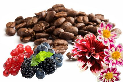 50g Espresso Guatemala SHB Bio-Fairtrade Arabica
